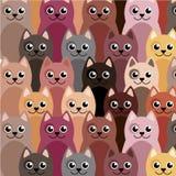 Милая и смешная картина кота стоковое изображение rf