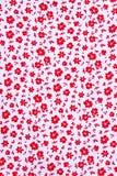 Милая картина в малом цветке Стоковая Фотография