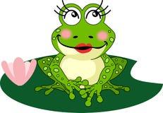 милая лягушка Стоковая Фотография RF