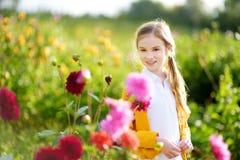 Милая маленькая девочка играя в blossoming поле георгина Ребенок выбирая свежие цветки в луге георгина на солнечный летний день Стоковое Фото