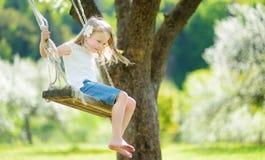 Милая маленькая девочка имея потеху на качании в blossoming старом саде яблони outdoors на солнечный весенний день стоковое фото