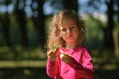 Милая маленькая девочка тщательно рассматривает зеленые лист, серьезный взгляд, вьющиеся волосы, солнечный портрет лета Стоковая Фотография