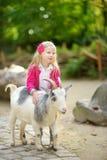Милая маленькая девочка petting и подавая коза на petting зоопарке Ребенок играя с животноводческой фермой на солнечный летний де Стоковые Фото
