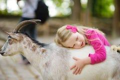 Милая маленькая девочка petting и подавая коза на petting зоопарке Ребенок играя с животноводческой фермой на солнечный летний де Стоковое Фото