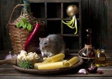 Милая маленькая серая крыса сидит в деревянной плите с макаронными изделиями и сыром пармезан и другими ингредиентами Натюрморт в стоковое фото rf