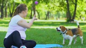 Милая молодая женщина сидя в парке на лужайке и играя с собакой, релаксацией видеоматериал