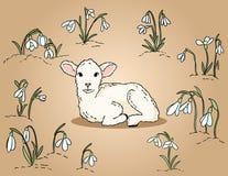 Милая овечка среди иллюстрации руки snowdrops вычерченной красочной бесплатная иллюстрация