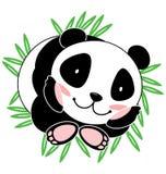 милая панда Стоковые Изображения RF