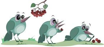 Милая птица ест ягоды Грустный персонаж из мультфильма Плохая еда иллюстрация штока