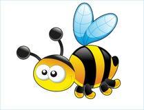 Милая пчела. Стоковая Фотография RF