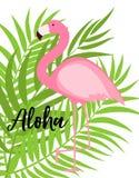 Милая розовая иллюстрация вектора предпосылки лета фламинго Стоковые Фото