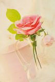 Милая розовая предпосылка сбора винограда Стоковая Фотография RF