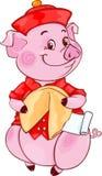 Милая свинья мандарина с печеньем с предсказанием на Новый Год 2019 отрезок стоковое изображение