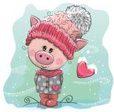 Милая свинья мультфильма в связанной крышке бесплатная иллюстрация