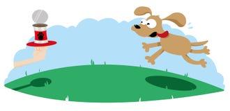 Милая собака и еда бесплатная иллюстрация