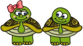 Милая черепаха пар бесплатная иллюстрация