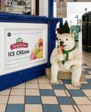 Милое мороженое рекламы статуи медведя Стоковое фото RF