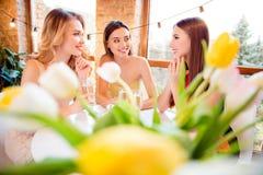 3 милое, очаровательные девушки празднуя день рождения, день ` s женщин, Стоковое фото RF