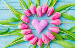 Милое розовое сердце влюбленности с романтичными тюльпанами цветет на свете - голубой деревянной предпосылке Стоковое Изображение RF