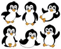 Милое собрание пингвинов стоковое