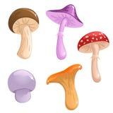 милые грибы установили Стоковая Фотография