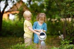 Милые заводы мальчика и девушки моча в саде на дне лета солнечном Хелперы мамы маленькие стоковые изображения