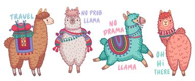 Милые ламы со смешными цитатами стоковая фотография