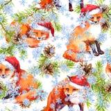 Милые лисы в красных шляпах праздника в снежностях Ветви рождественской елки сосны Безшовная картина для рождества акварель иллюстрация штока