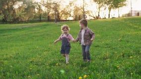 Милые маленькие дети держа руки и ход совместно на траве в парке видеоматериал