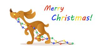 Милые усмехаясь света нося рождества желтой собаки Стоковая Фотография
