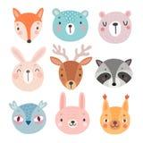 Милые характеры полесья, медведь, лиса, енот, кролик, белка, олень, сыч бесплатная иллюстрация