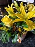 Милые цветки стоковое изображение