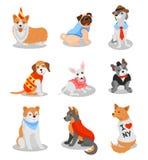 Милые чистоплеменные щенята установили, иллюстрации вектора характеров собаки родословной на белой предпосылке иллюстрация вектора