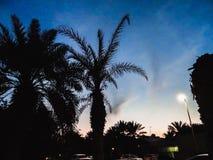 Милый восход солнца стоковые изображения rf