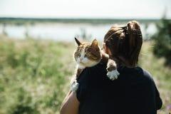 Милый вспугнутый кот идет на отключение лета стоковое фото rf