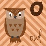 Милый зоопарк шаржа проиллюстрировал алфавит с смешными животными: O для сыча Стоковая Фотография