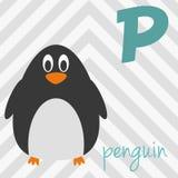 Милый зоопарк шаржа проиллюстрировал алфавит с смешными животными: P для пингвина Стоковая Фотография