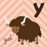 Милый зоопарк шаржа проиллюстрировал алфавит с смешными животными: Y для яков Стоковые Фотографии RF