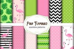 Милый комплект картин розовых флюидов фламинго тропических безшовных также вектор иллюстрации притяжки corel Стоковое Изображение