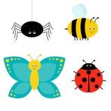 Милый комплект насекомого шаржа Ladybug, паук, бабочка и пчела изолировано иллюстрация вектора