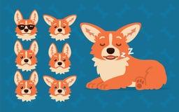 Милый конструктор Corgi Welsh Vector иллюстрация смещать собаки Corgi и свои эмоций выставок головы различные в квартире бесплатная иллюстрация