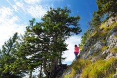 Милый маленький hiker наслаждаясь живописными взглядами от горы Tegelberg, части Ammergau Альпов, обнаруженного местонахождение г стоковая фотография