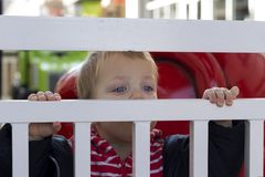 Милый малыш смотря из запертый ограждать провода outdoors Стоковая Фотография RF
