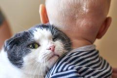 Милый мальчик обнимает большую кошку стоковые изображения