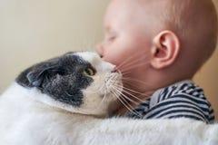 Милый мальчик обнимает большую кошку стоковое фото rf