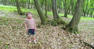 Милый мальчик плача в лесе видеоматериал
