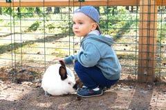 Милый мальчик petting белый кролик стоковые изображения rf