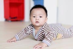 Милый младенец вползая на поле гостиной Стоковая Фотография