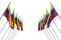 Милый много флагов Венесуэлы вися дальше в угловых опорах от левой стороны и правильных сторон изолированных на бело- любая иллюс иллюстрация вектора