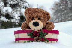 Милый плюшевый медвежонок в корзине праздника Стоковое Изображение